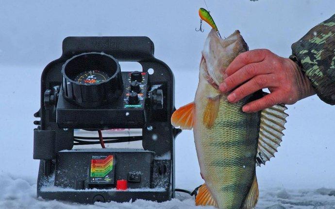 Эхолот для зимней рыбалки