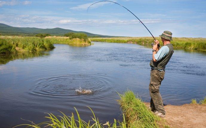Полезные советы рыбаку