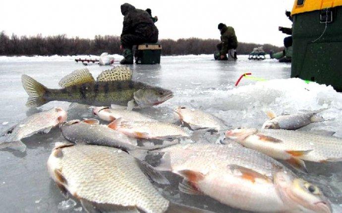 Рыбалка зимой в Ленинградской